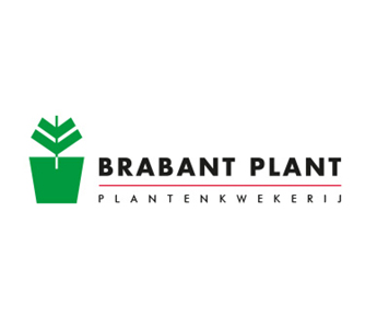 Brabantplant | FSV Corporate Finance